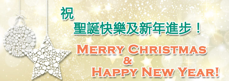 We wish you all Merry Christmas and Happy New Year!